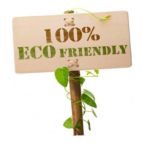 7355639 - eco friendly sign message on a wooden panel and green plant - image is isolated on a white background